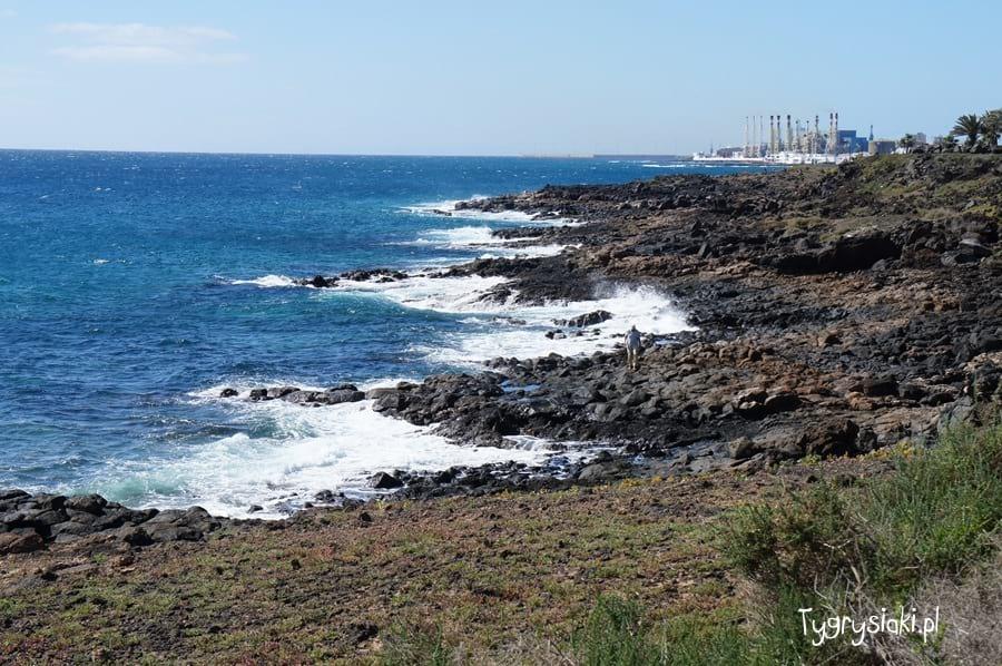 Fale oceanu rozbijają się oskały.