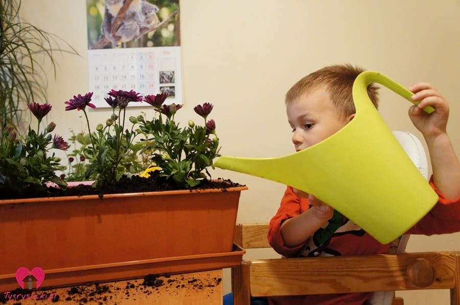 Mati podlewa kwiaty