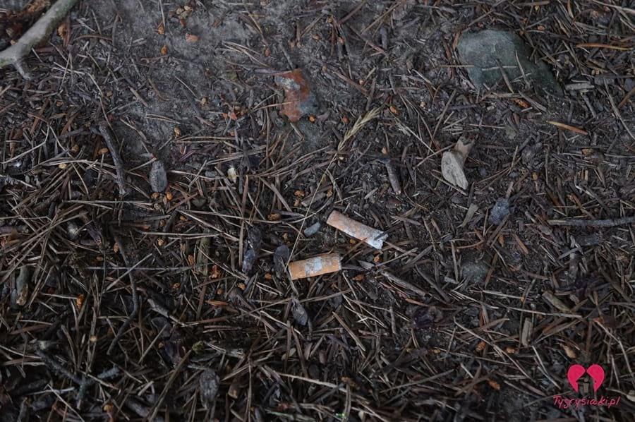 śmieci naściółce wlesie