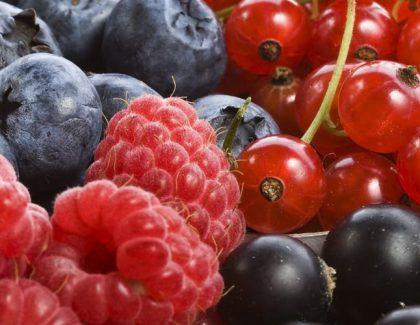 Owoce, warzywa idzieci – 3 fakty