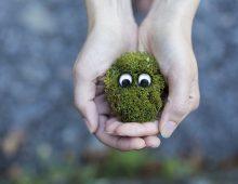 Edukacyjna eko-bajka dla dzieci