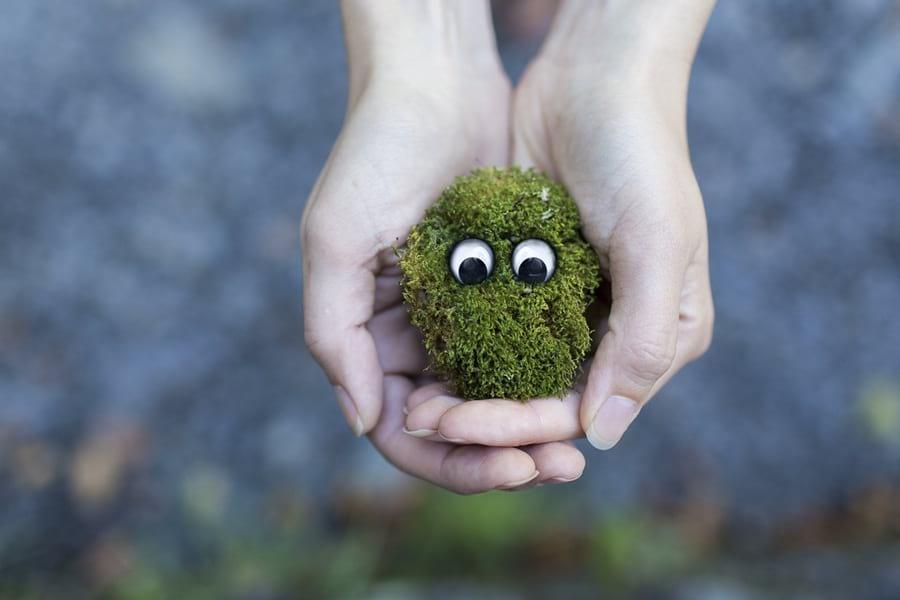 ekologia-dla-dzieci