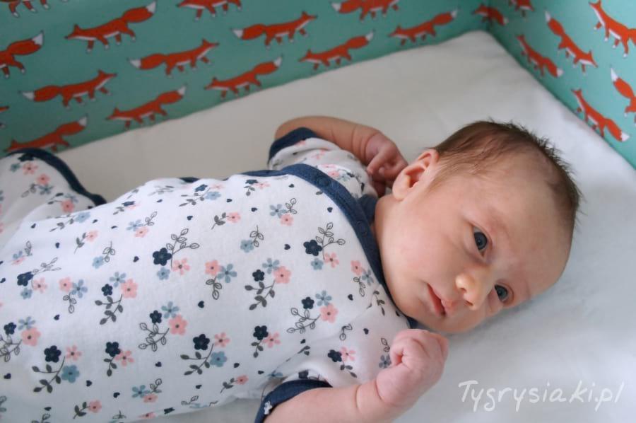 baby-box-liski