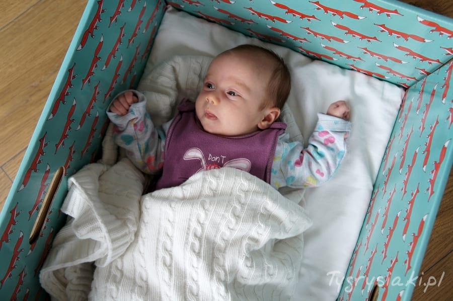 dzidzius-w-pudelko-dla-niemowlaka
