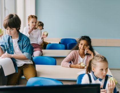 Szkoła publiczna czyprywatna – któralepsza?