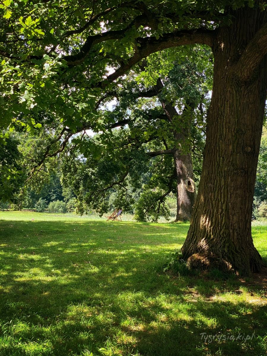 moszna-palac-park-miejsce-rodzinny-piknik